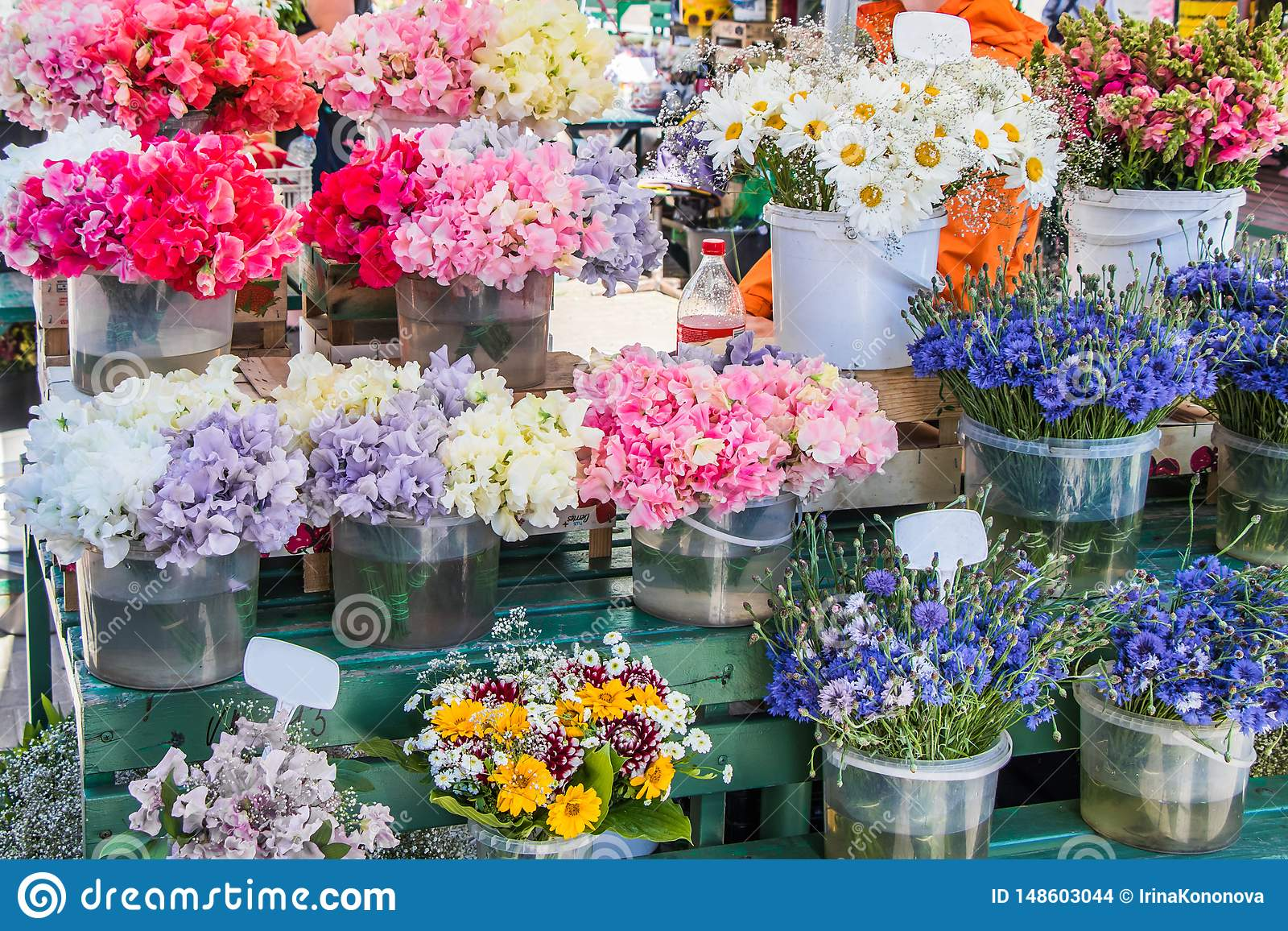 Sweet peas, chamomile, cornflower and other flowers