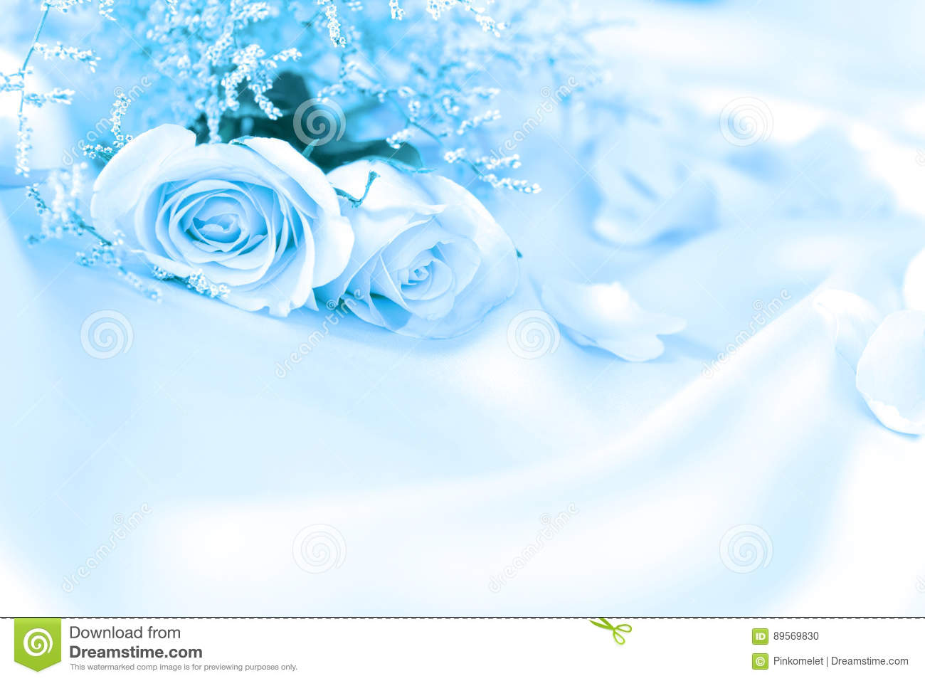Sweet Rose Flowers For Love Romance Or Wedding Background Stock Photo Image Of Blossom Macro 89569830