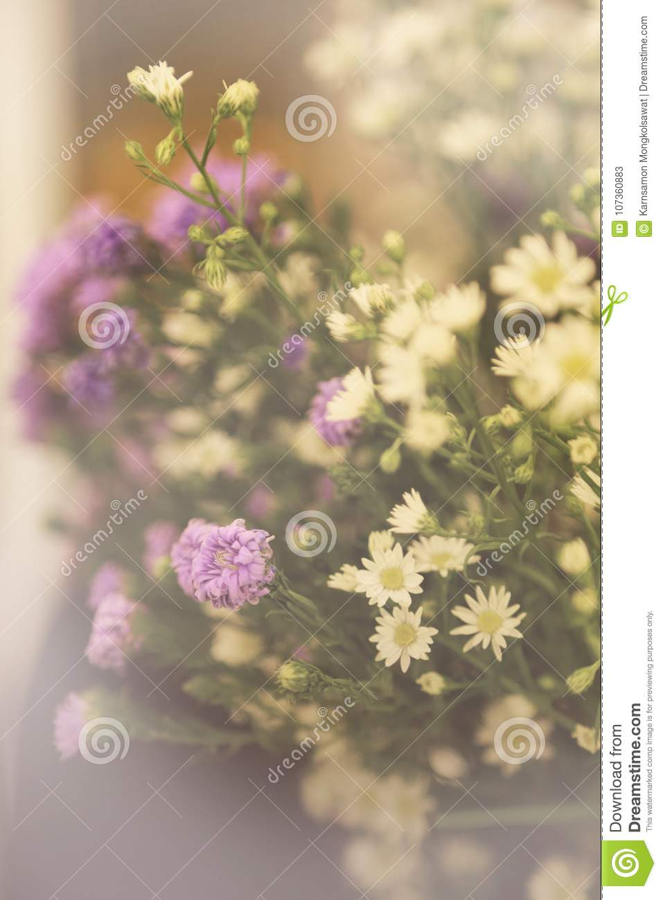 Sweet And Soft Bouquets With Small Purple And White Flowers Stock