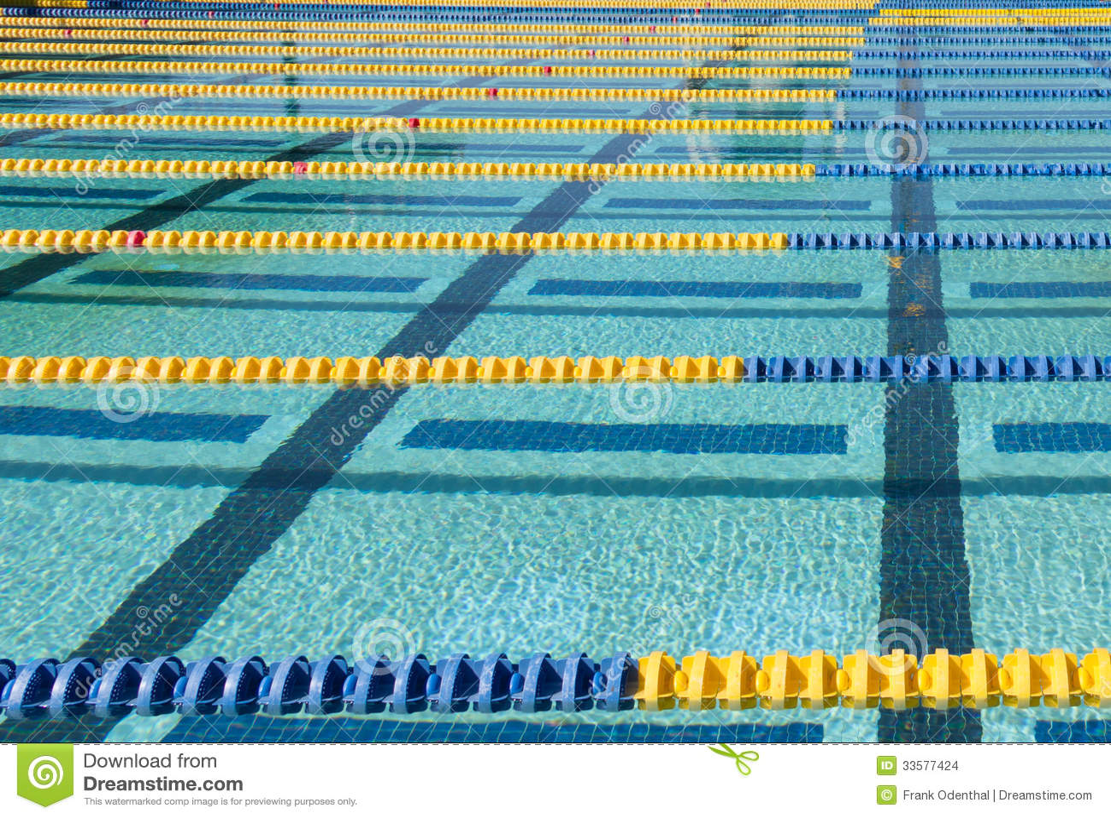 Swim Lane Marker Stock Images Image 33577424
