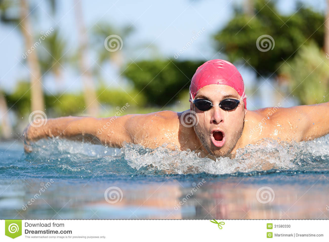 Swimmer Man Swimming Butterfly Strokes In Pool Stock Photo Image 31580330
