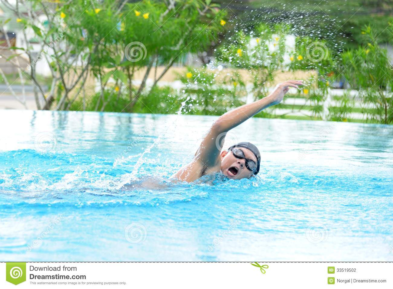 Swimmer Stock Photography Image 33519502