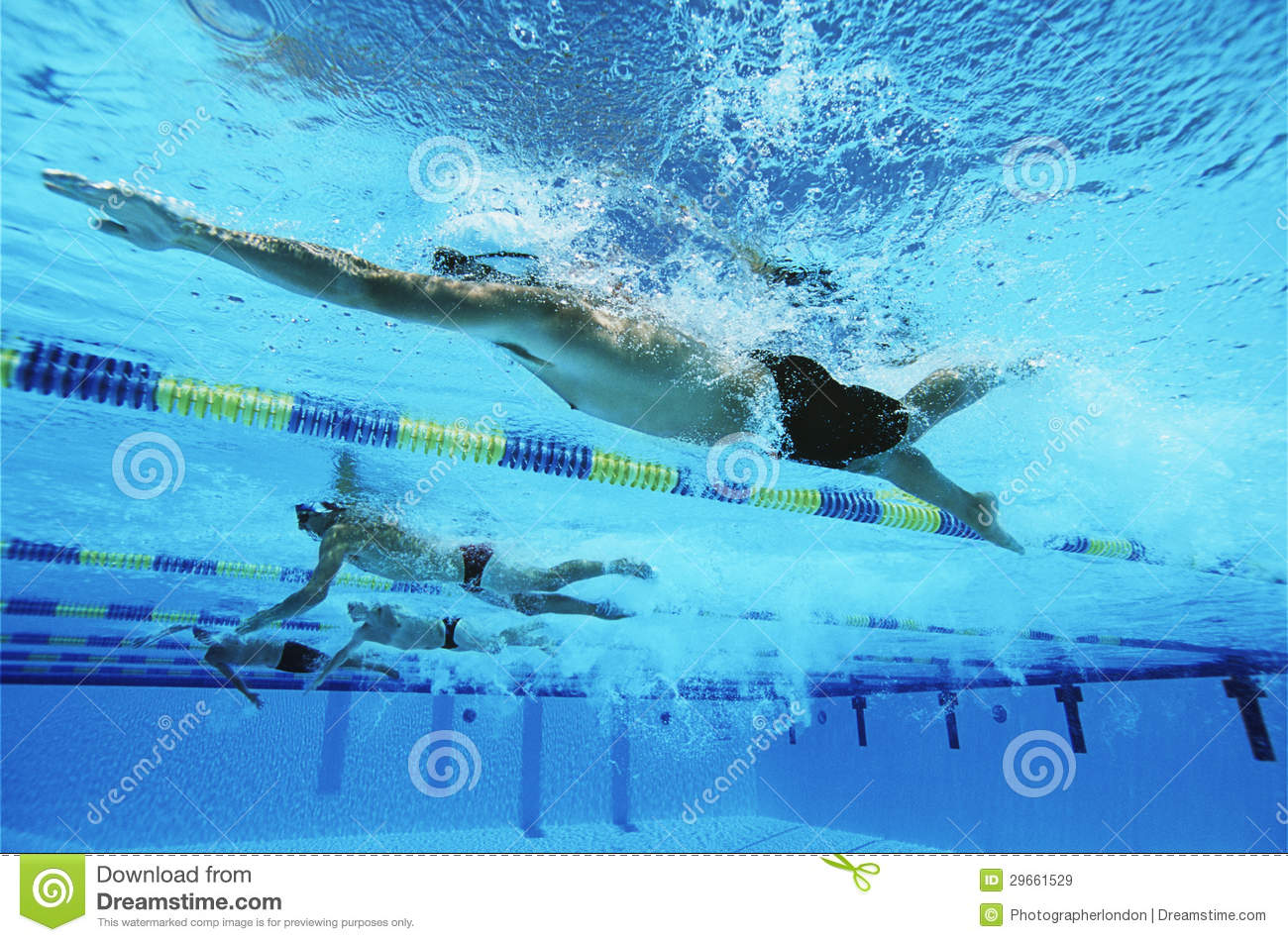 Swimmers Swimming Together In A Line During Race