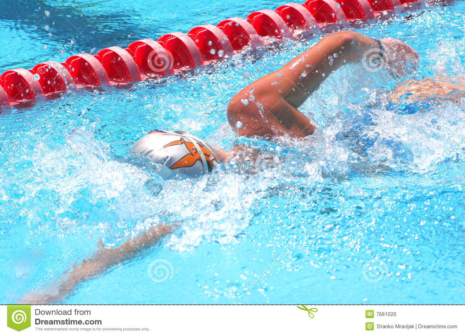 Swimming Stock Photo Image 7661020