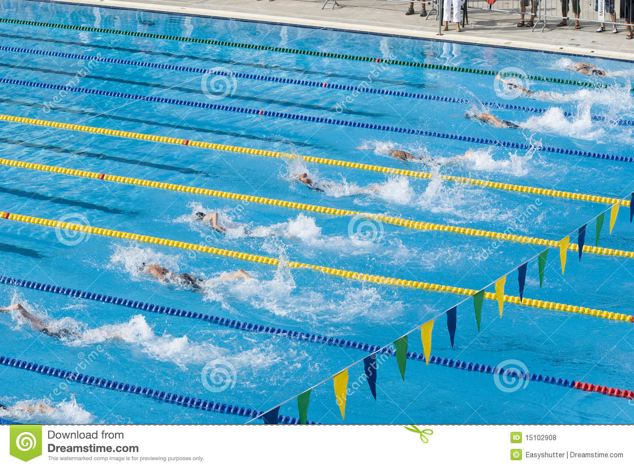 Swimming Competition Royalty Free Stock Photos - Image: 15102908