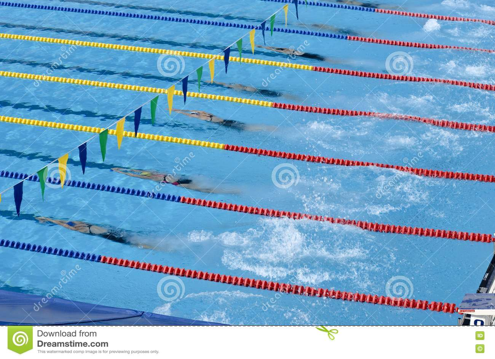 Swimming pool design software basnipe mp3 for Pool design software for mac
