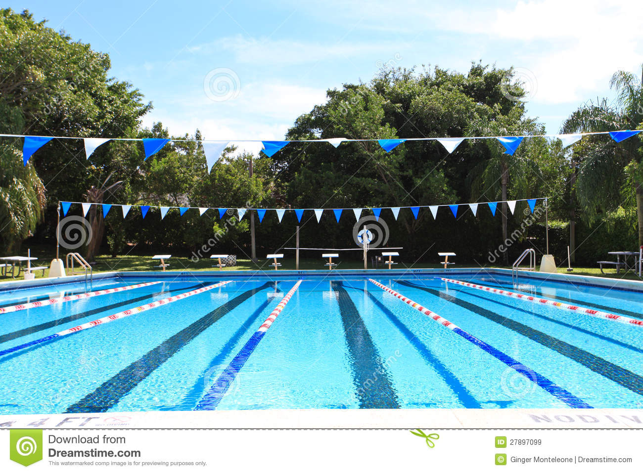 Swimming Competition Pool Royalty Free Stock Images Image 27897099