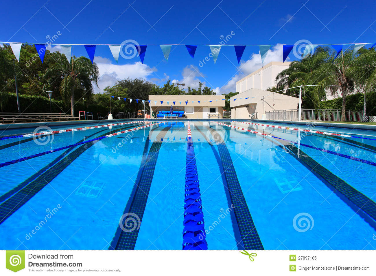 Swimming competition pool royalty free stock image image How big is a competition swimming pool