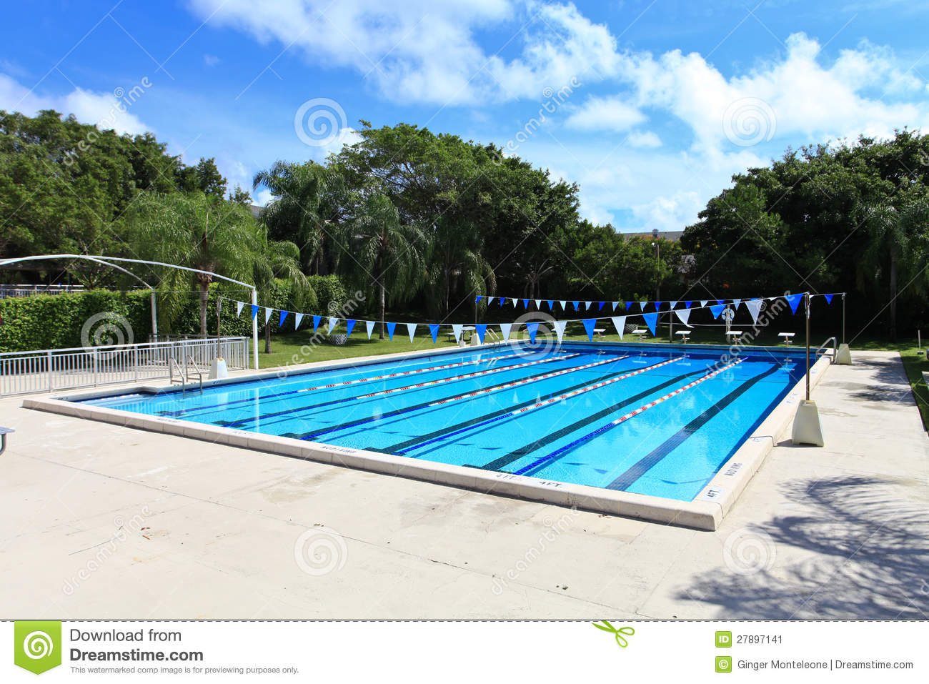 Swimming Competition Pool Stock Image Image 27897141