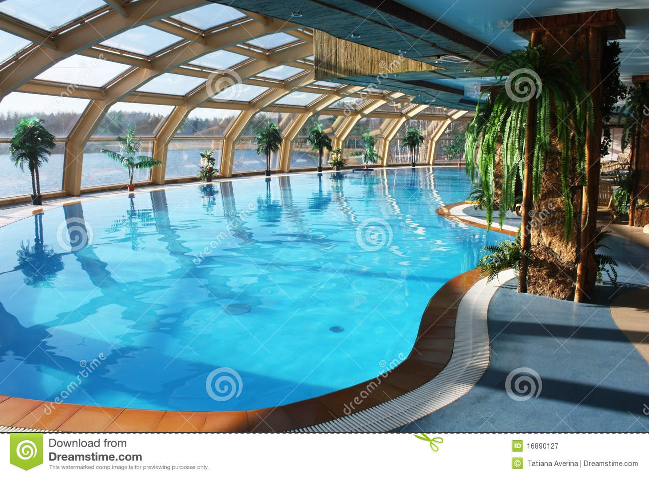 Swimming Pool Royalty Free Stock Photography Image 16890127