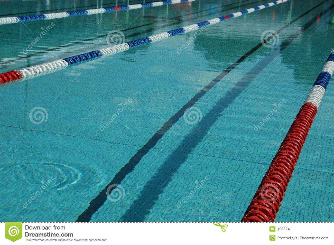 Swimming Pool Stock Image Of Olympic Competition