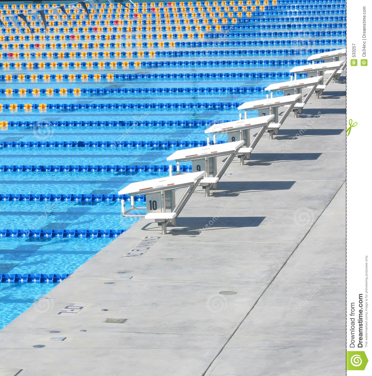 Olympic Size Swimming Pools With Mansions: Olympic Sized Swimming Pool Stock Image