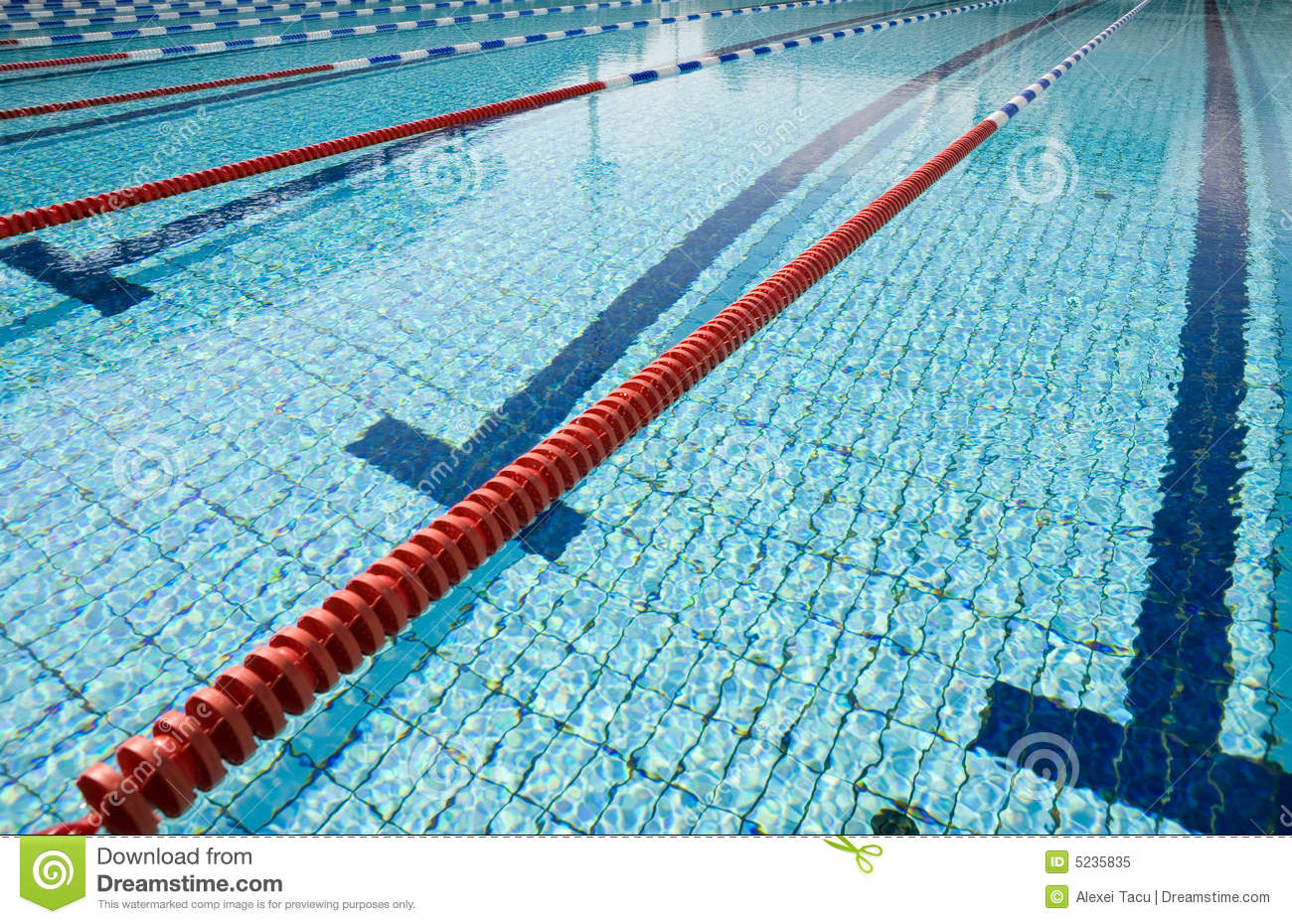 Swimming pool stock image image of clean pool swimming 5235835 for Mangalore swimming pool timings