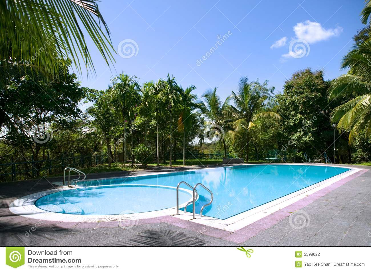 Swimming stock photography 47599004 for Swimming pool dealers