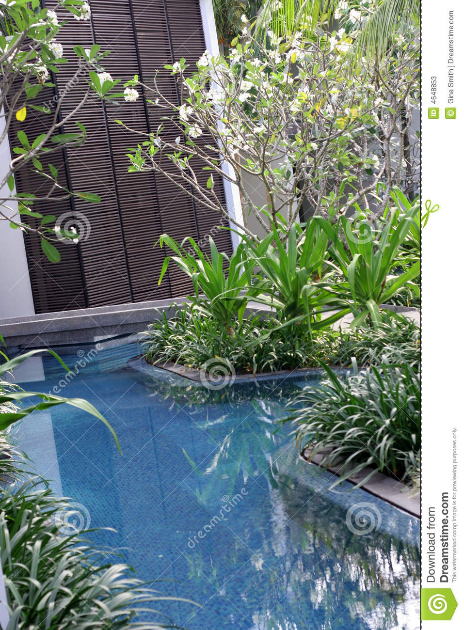 Swimming pool area stock photos image 4648853 - Swimming pool area ...