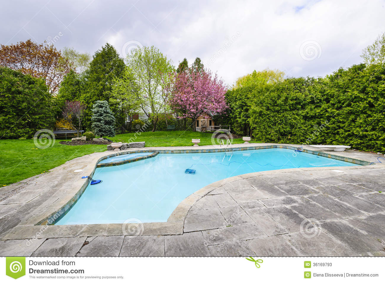 Swimming pool in backyard stock image image of outdoors for Outdoor pool backyard