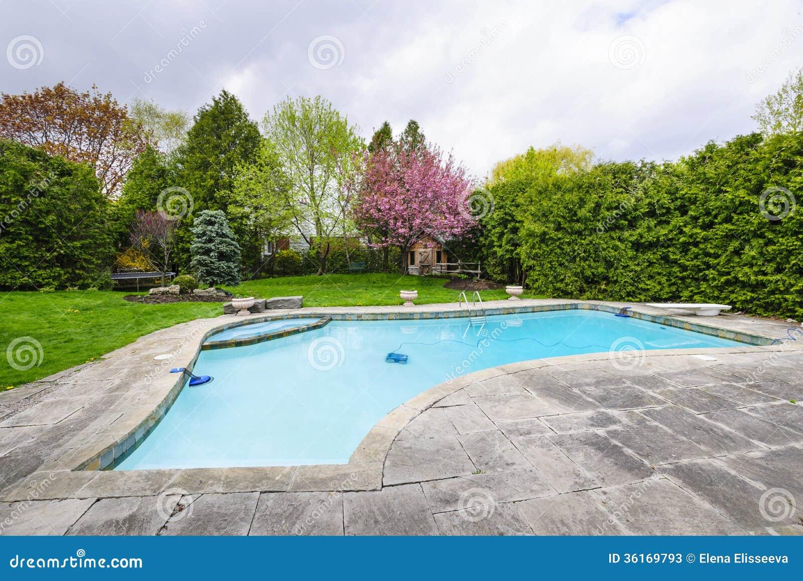 Swimming Pool In Backyard Stock Photos Image 36169793