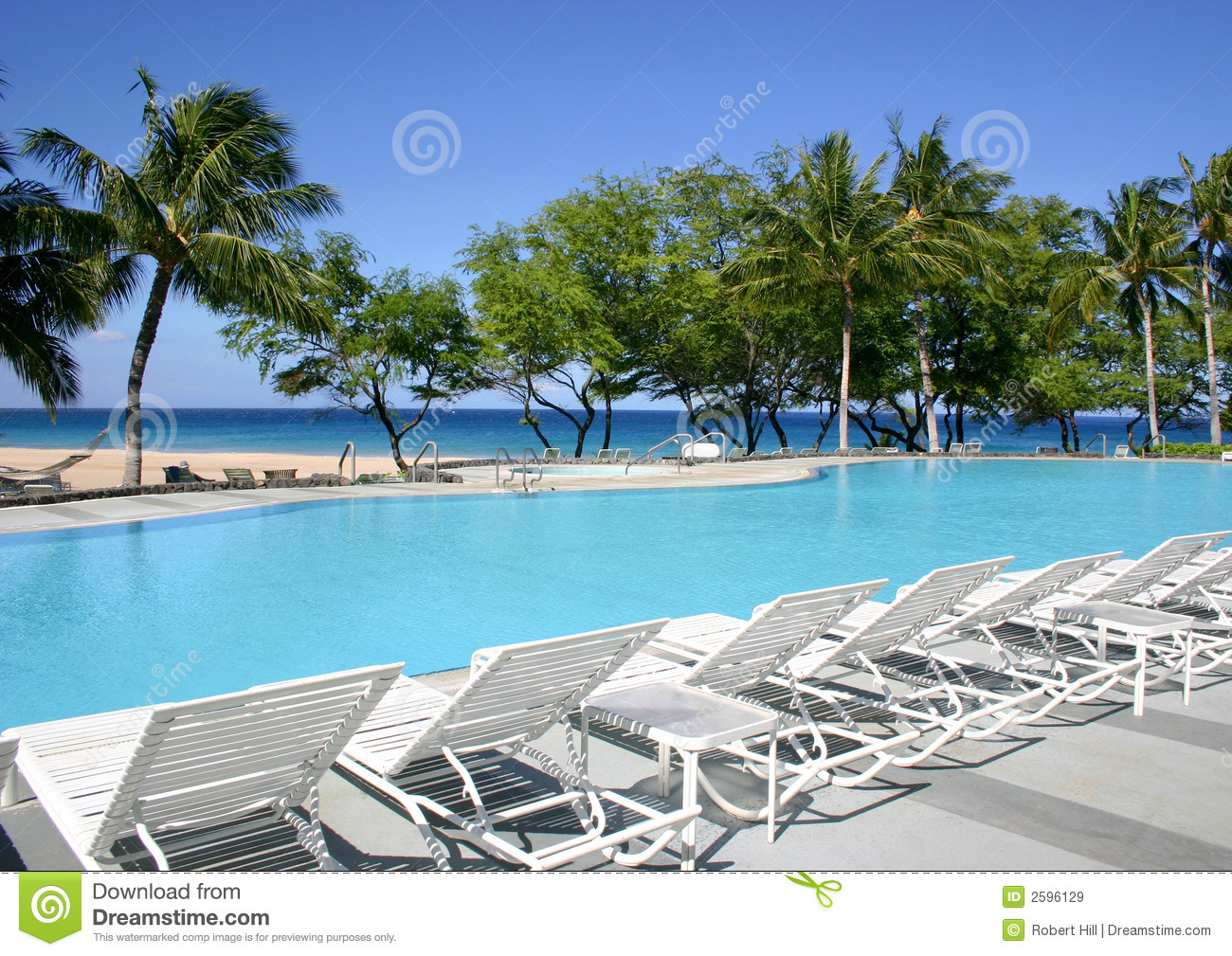 Swimming pool on the beach royalty free stock images - Palm beach swimming pool ...