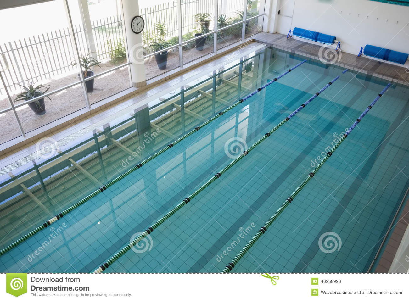 Swimming Pool In Fitness Club Stock Photo Image Of Club Athletic 46958996