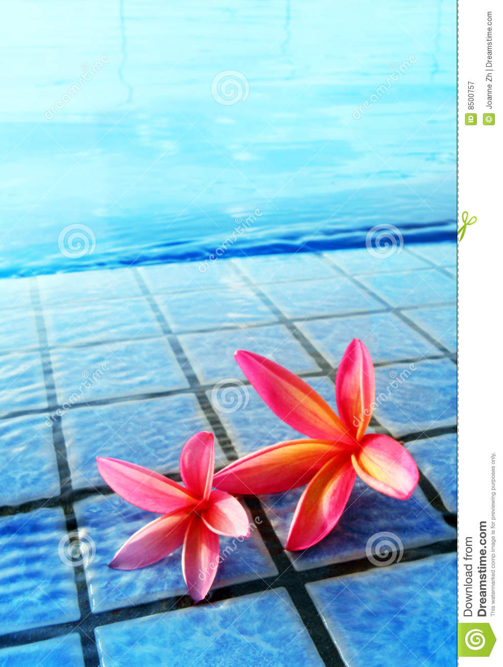 Swimming pool and flowers, tropical resorts hotel