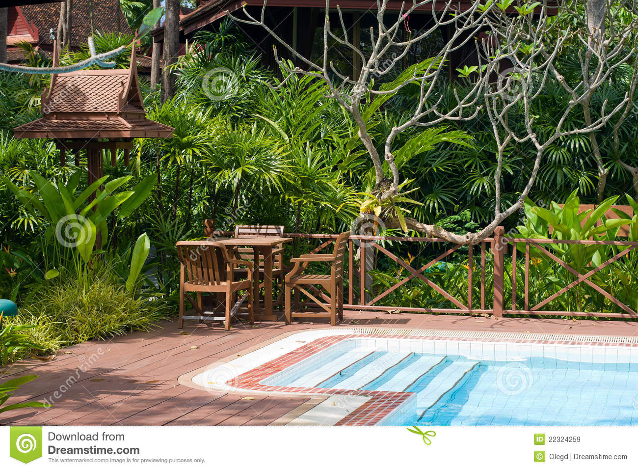 Swimming pool in garden royalty free stock images image for Swimming pools for your garden