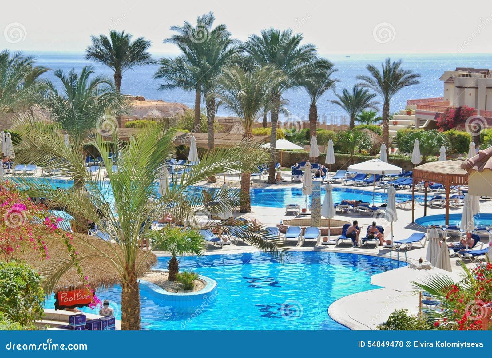 Swimming Pool Of Hilton Sharks Bay Hotel Stock Photo Image Of