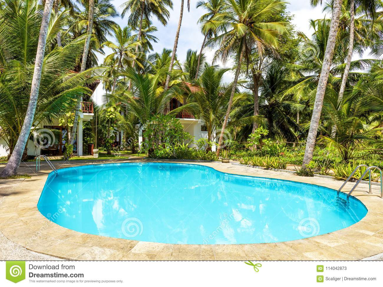 Swimming Pool And Houses In Tropical Hotel Editorial Stock ...
