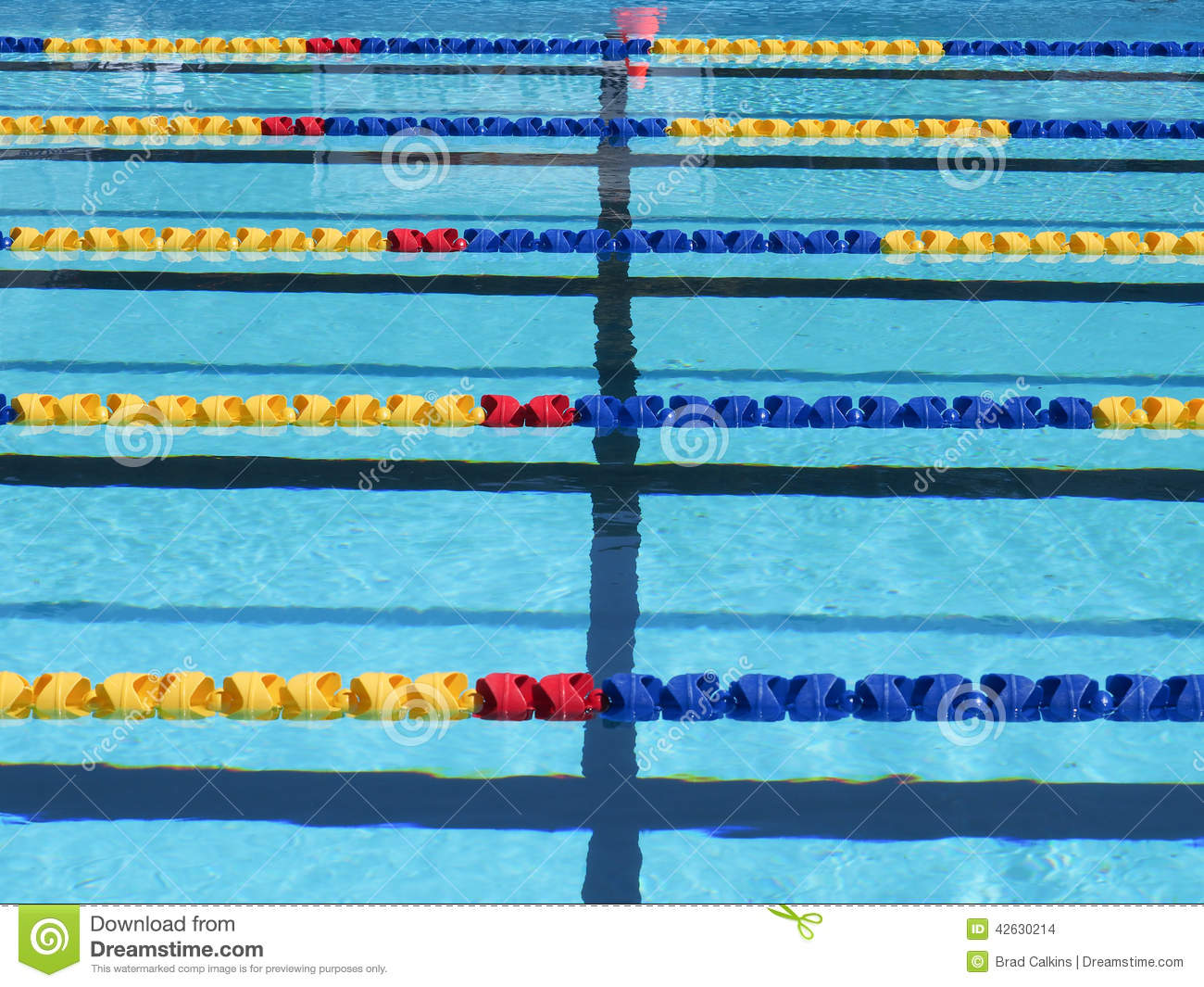 Swimming Pool Lane Ropes Stock Photo Image Of Markers