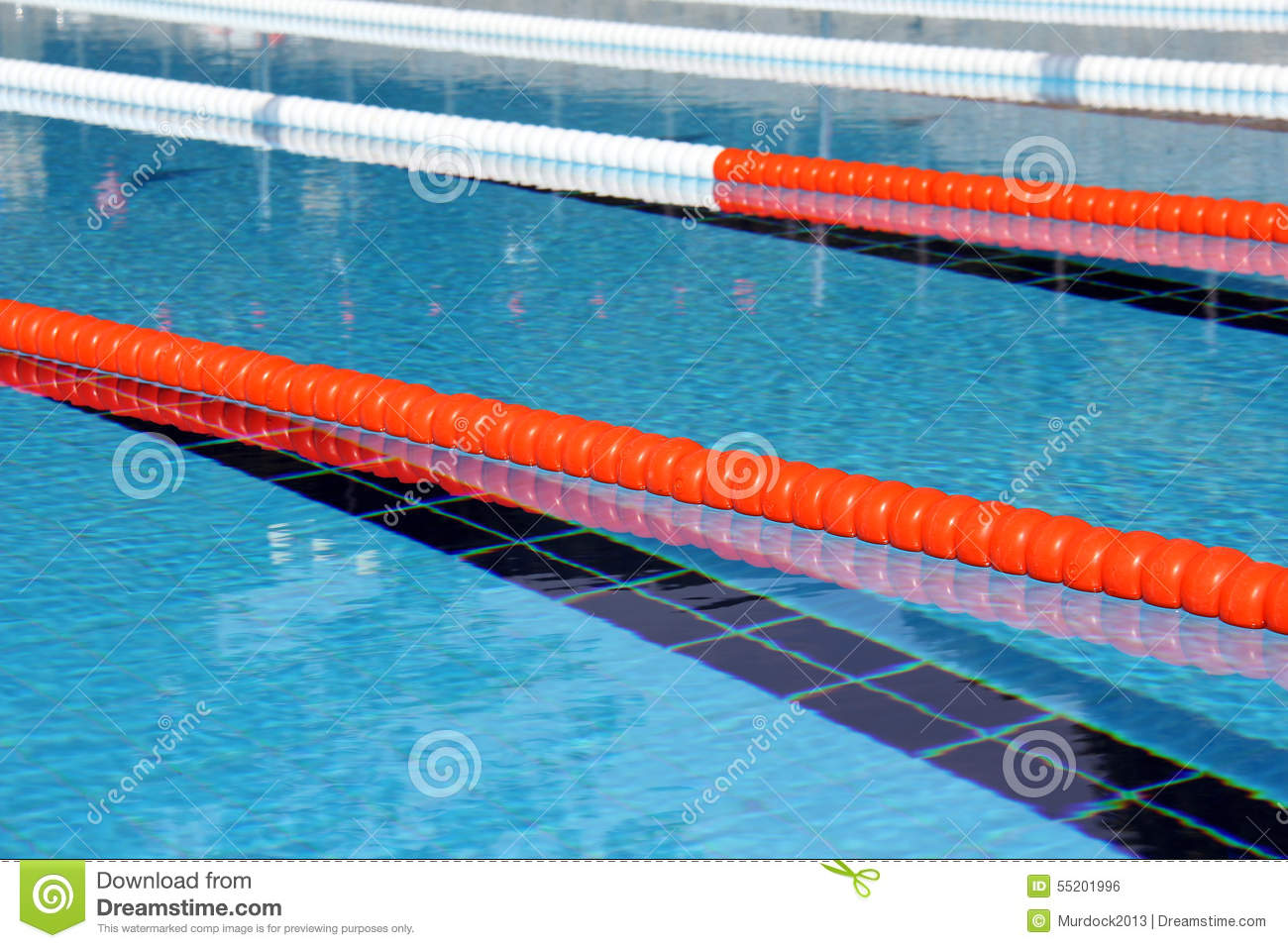Swimming pool lane Ropes stock photo. Image of olympic ...