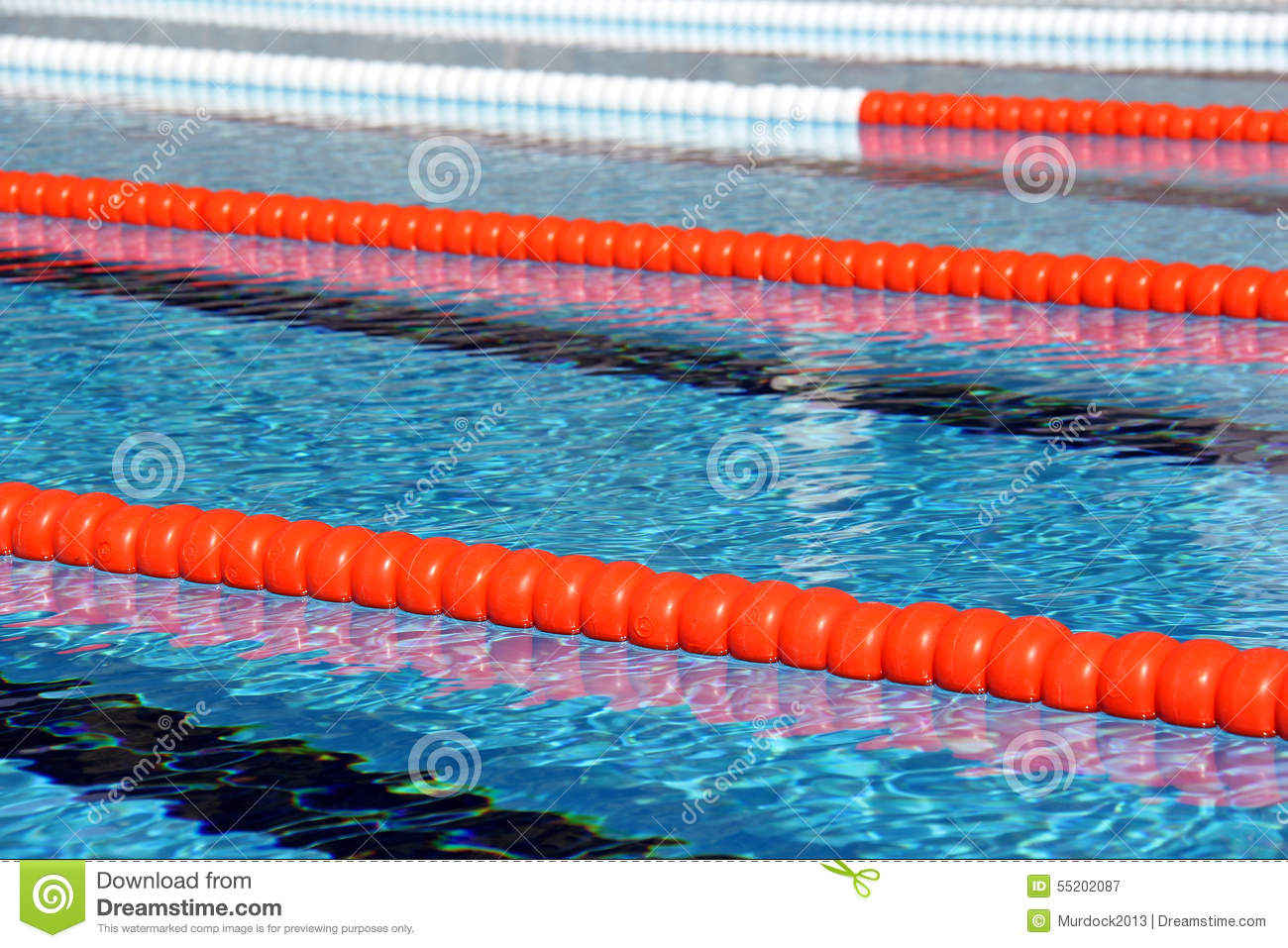 Swimming pool lane Ropes stock image. Image of swim, dive ...