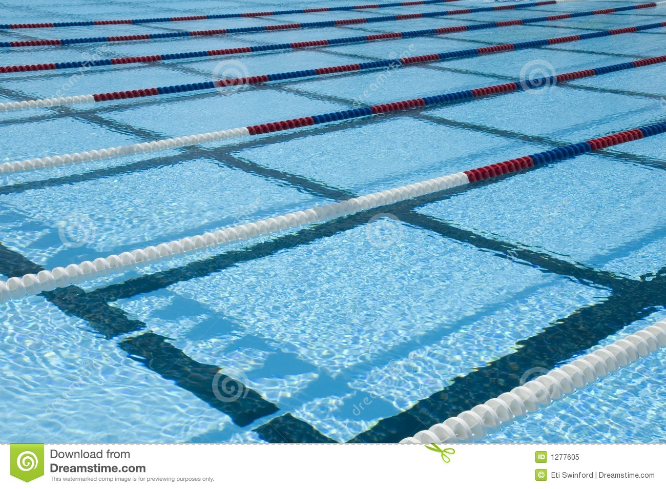 Swimming Pool Lanes Stock Image Image Of Pool Concept