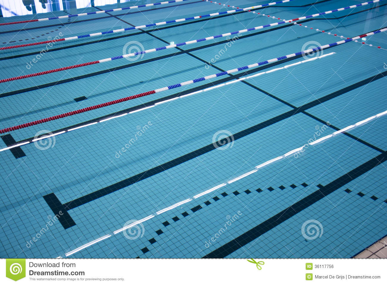 royalty free stock photo download swimming pool lanes - Olympic Swimming Pool Lanes