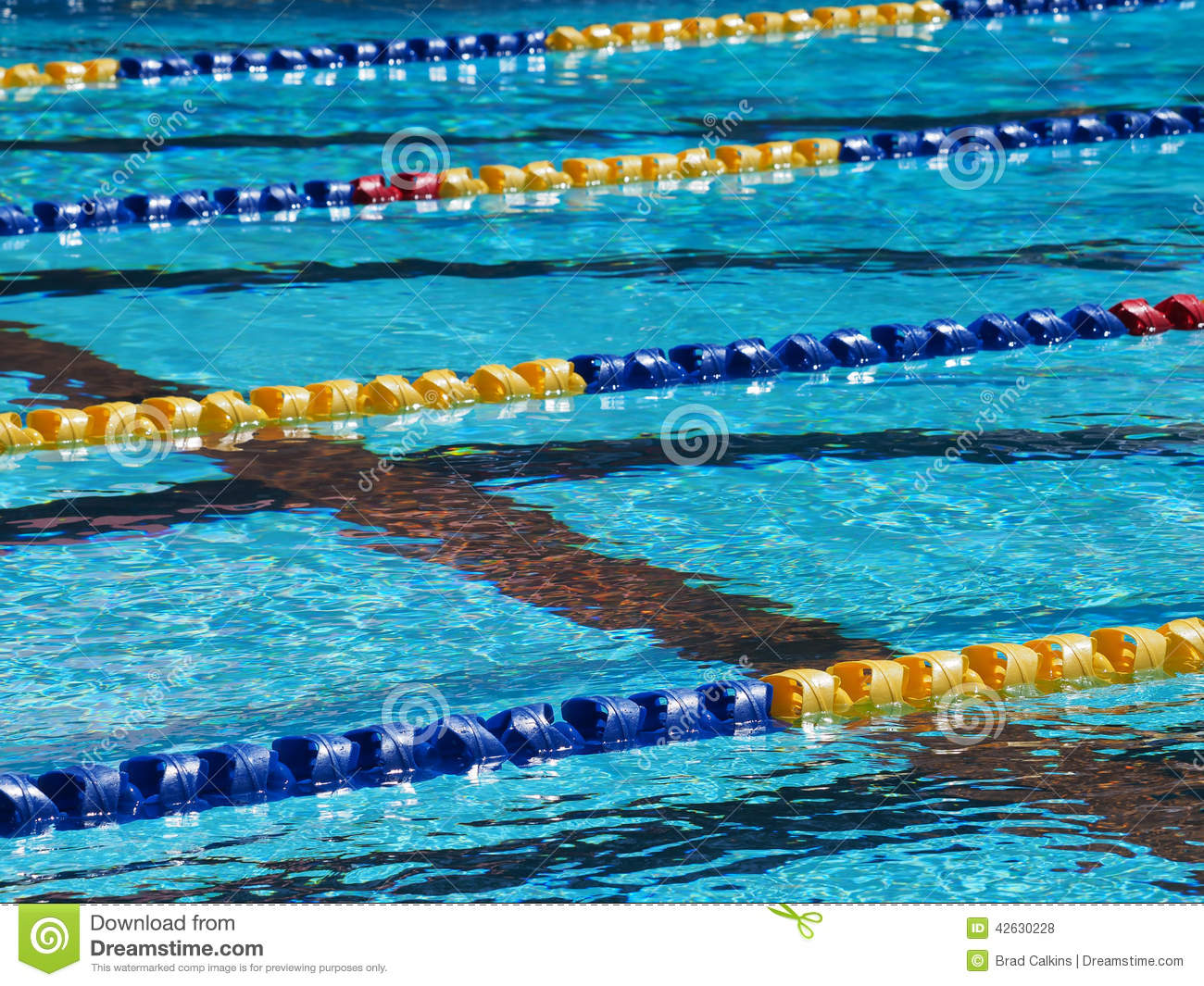Swimming Pool Lanes Stock Photo Image Of Water Swimming