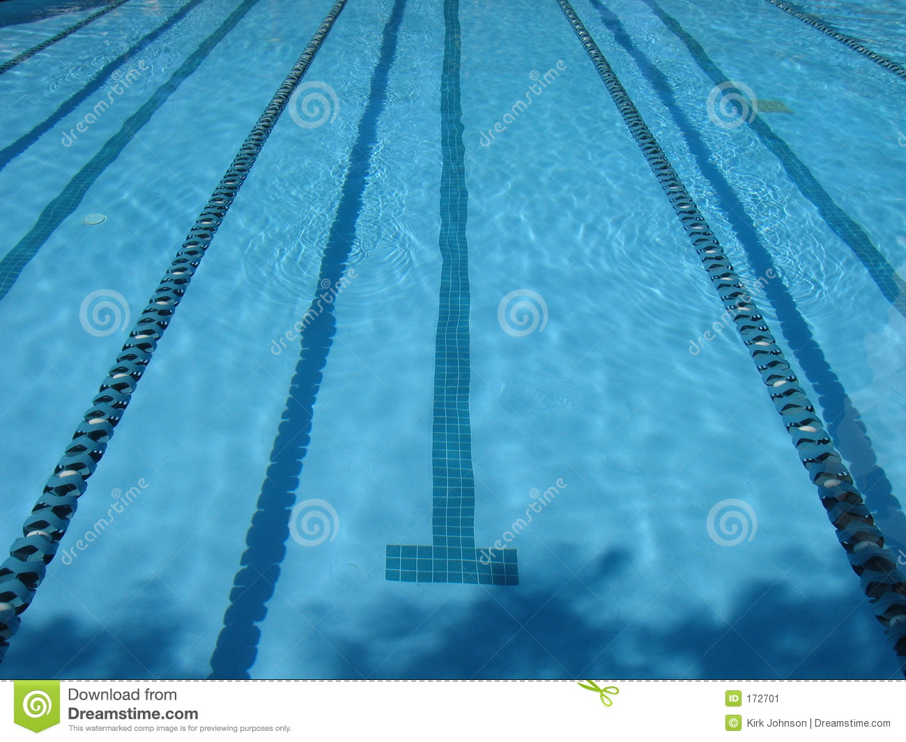 Swimming Pool Lap Lanes Stock Image - Image: 172701
