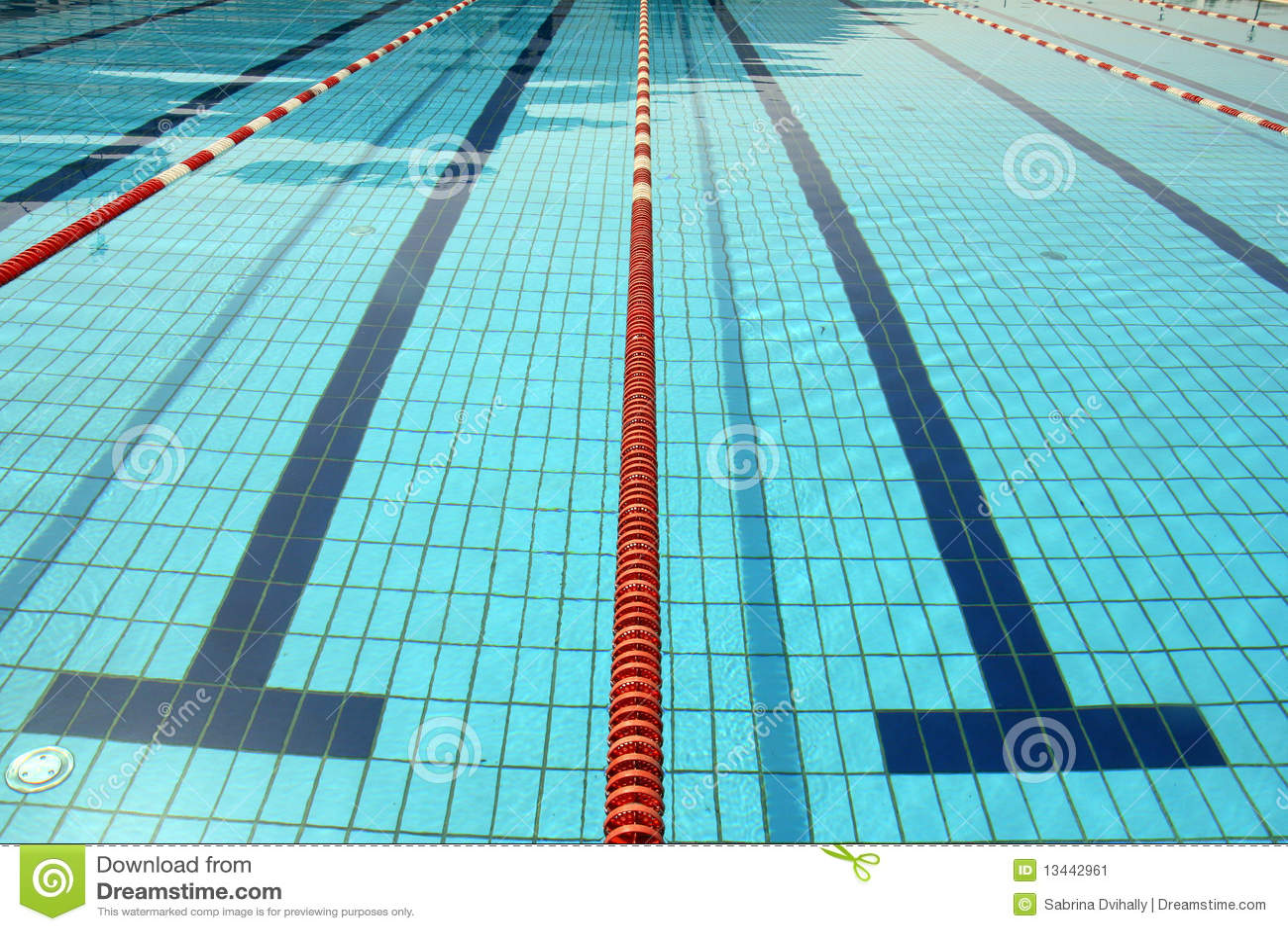 Swimming Pool Lines Amp Water Stock Image Image 13442961