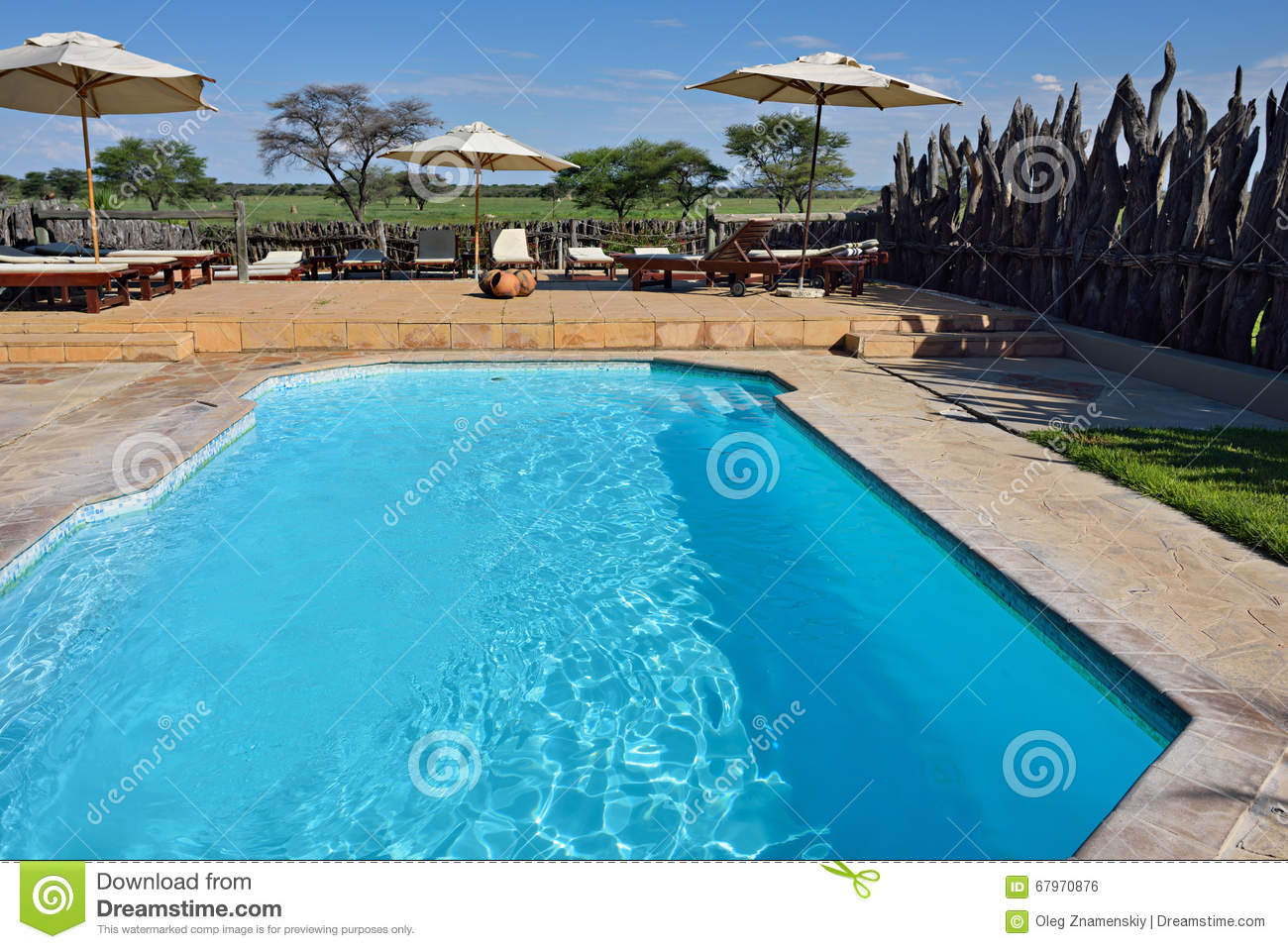 Swimming Pool Namibia Editorial Photo Image Of Sunbed 67970876