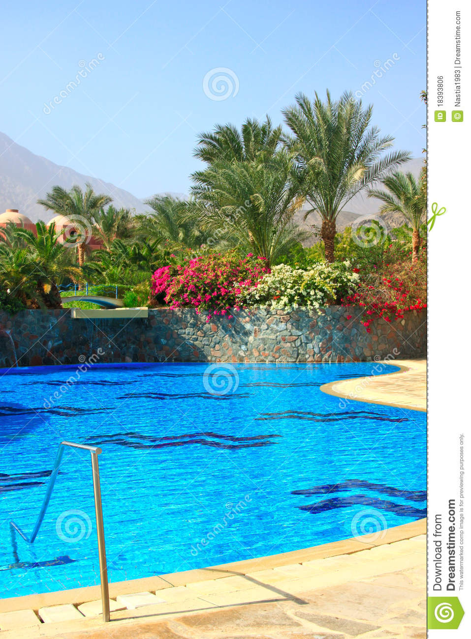 Swimming pool near palms royalty free stock image image 18393806 for Swimming pools open today near me