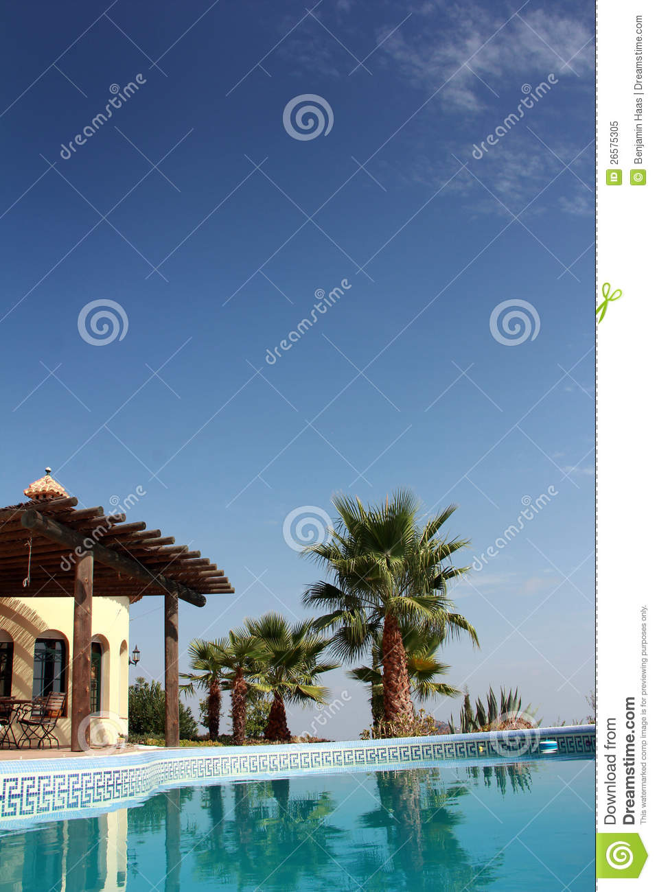 Swimming Pool And Nice Palm Royalty Free Stock Photo Image 26575305