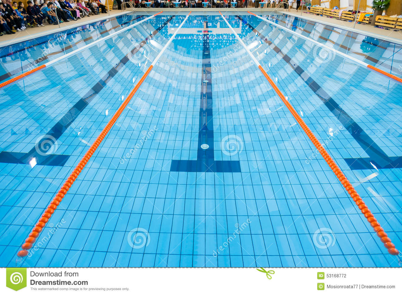 Swimming Pool Stock Photo Image Of Action Sportsman 53168772