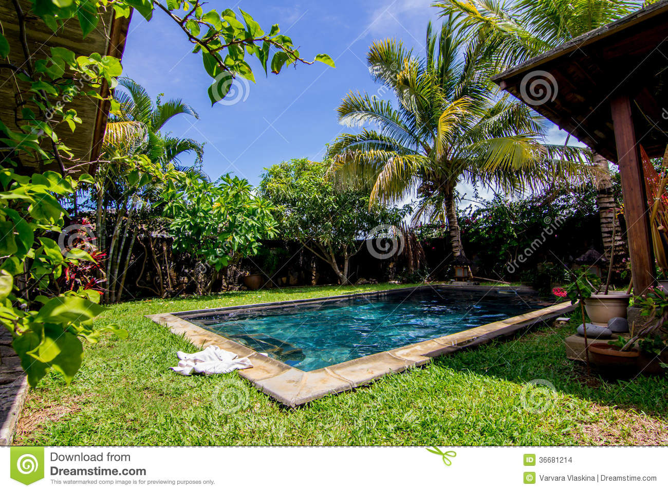 Swimming pool and palm trees in the backyard stock photo image 36681214 - Outdoor decoratie zwembad ...