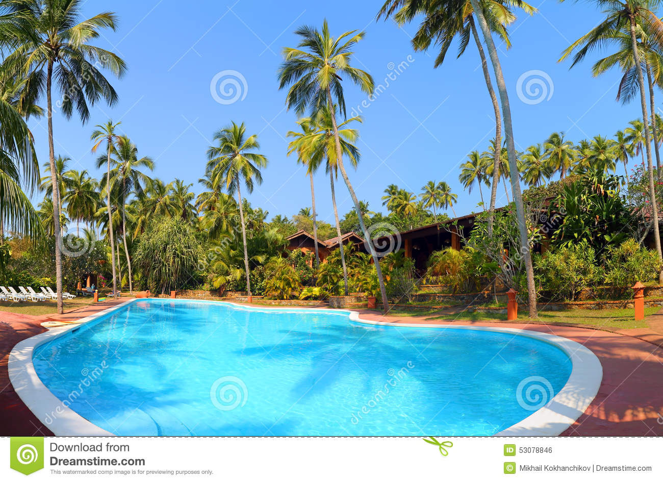 Swimming Pool With Palm Trees At Tropical Resort Stock Photo Image 53078846