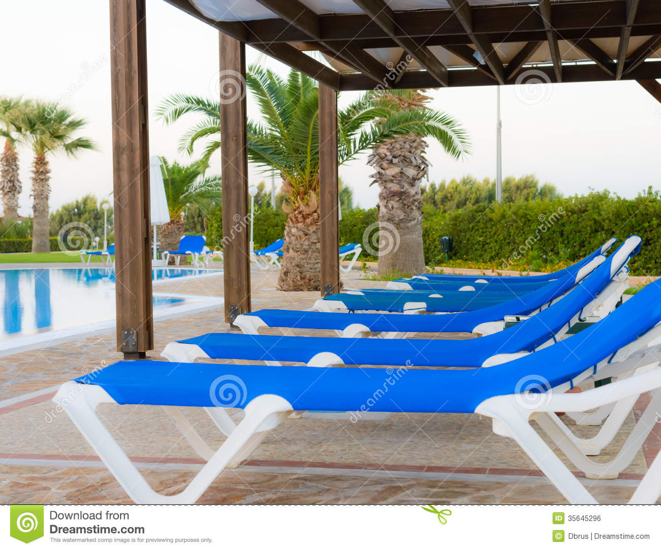 Deck chairs under a canopy stand near the swimming pool.