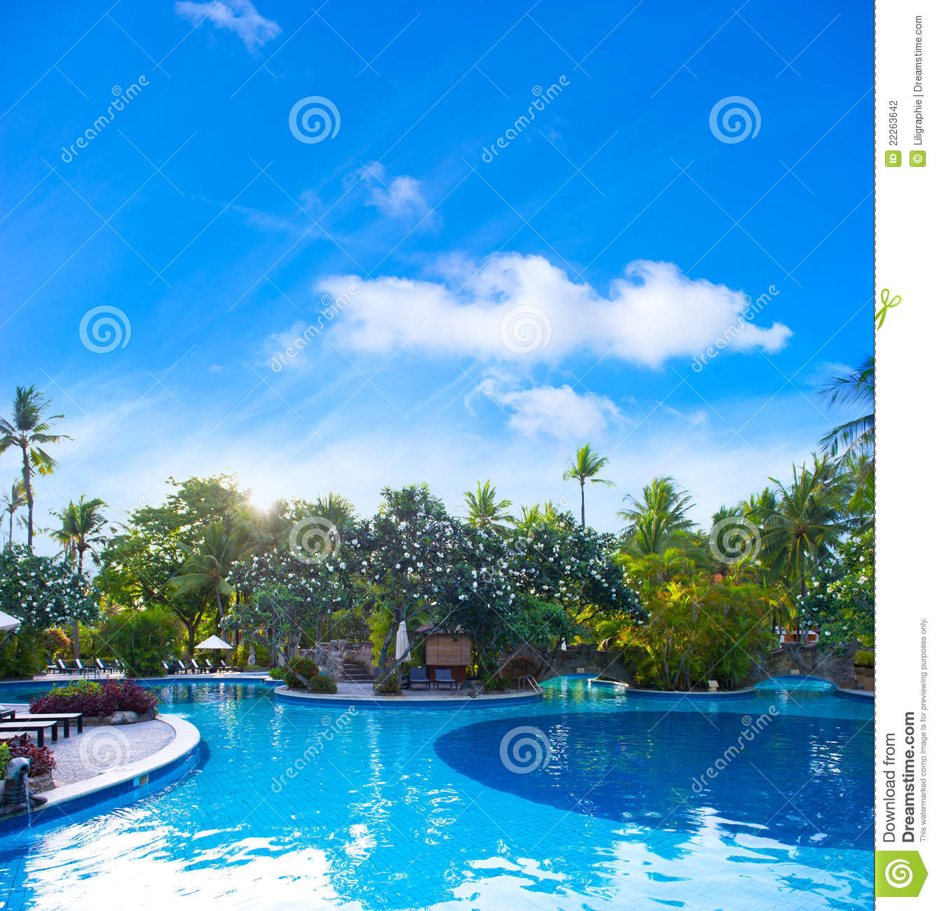 Swimming Pool Plants: Swimming Pool Surrounded By Tropical Plants Stock Photo