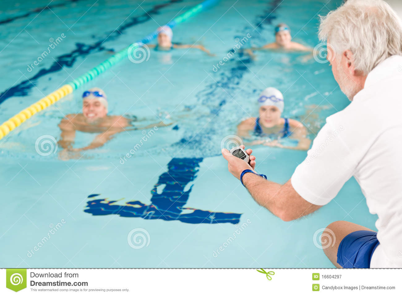 Swimming pool swimmer training competition stock image image of trainer female 16604297 for Swimming pool certification course
