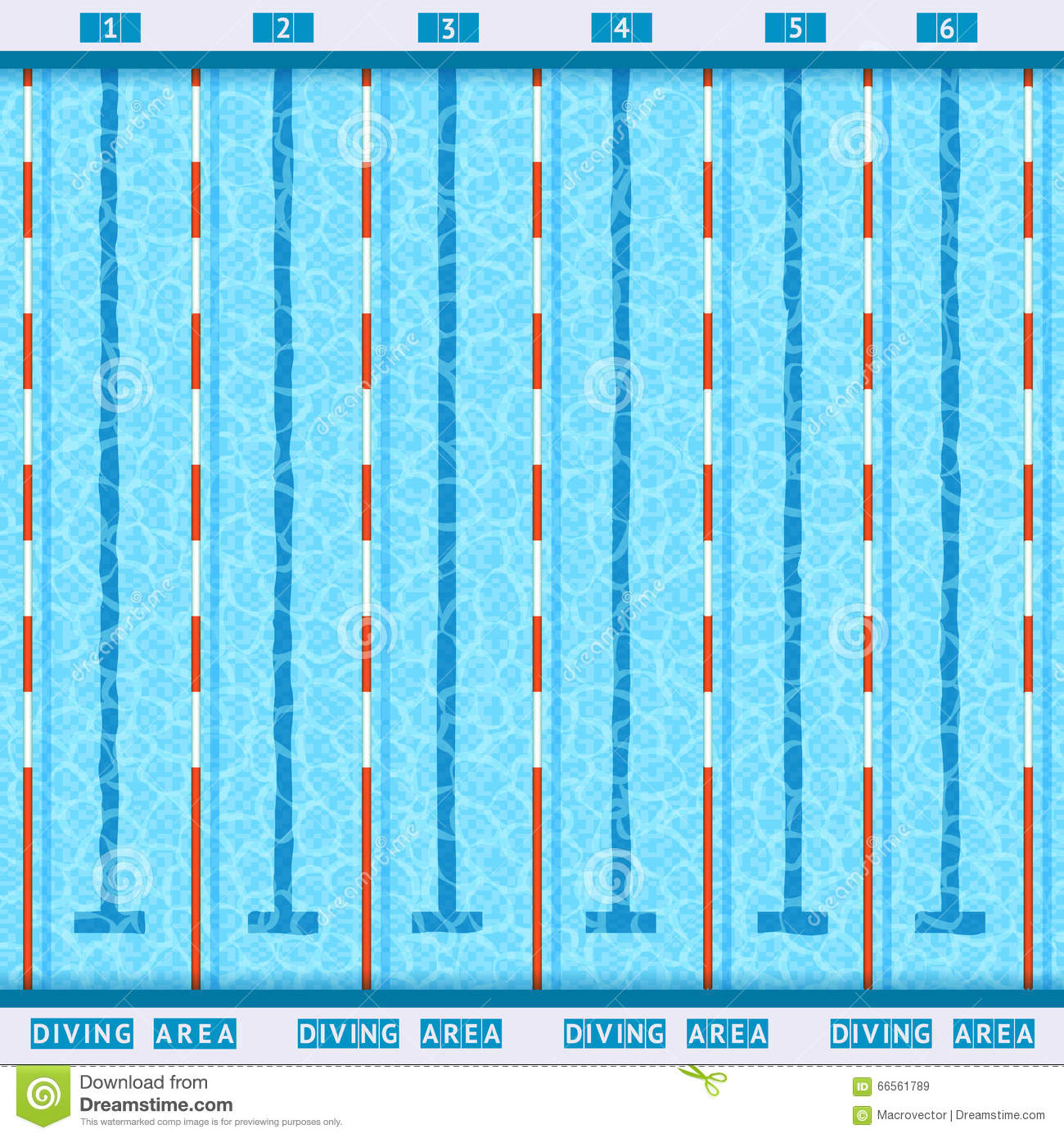royalty free vector download swimming pool