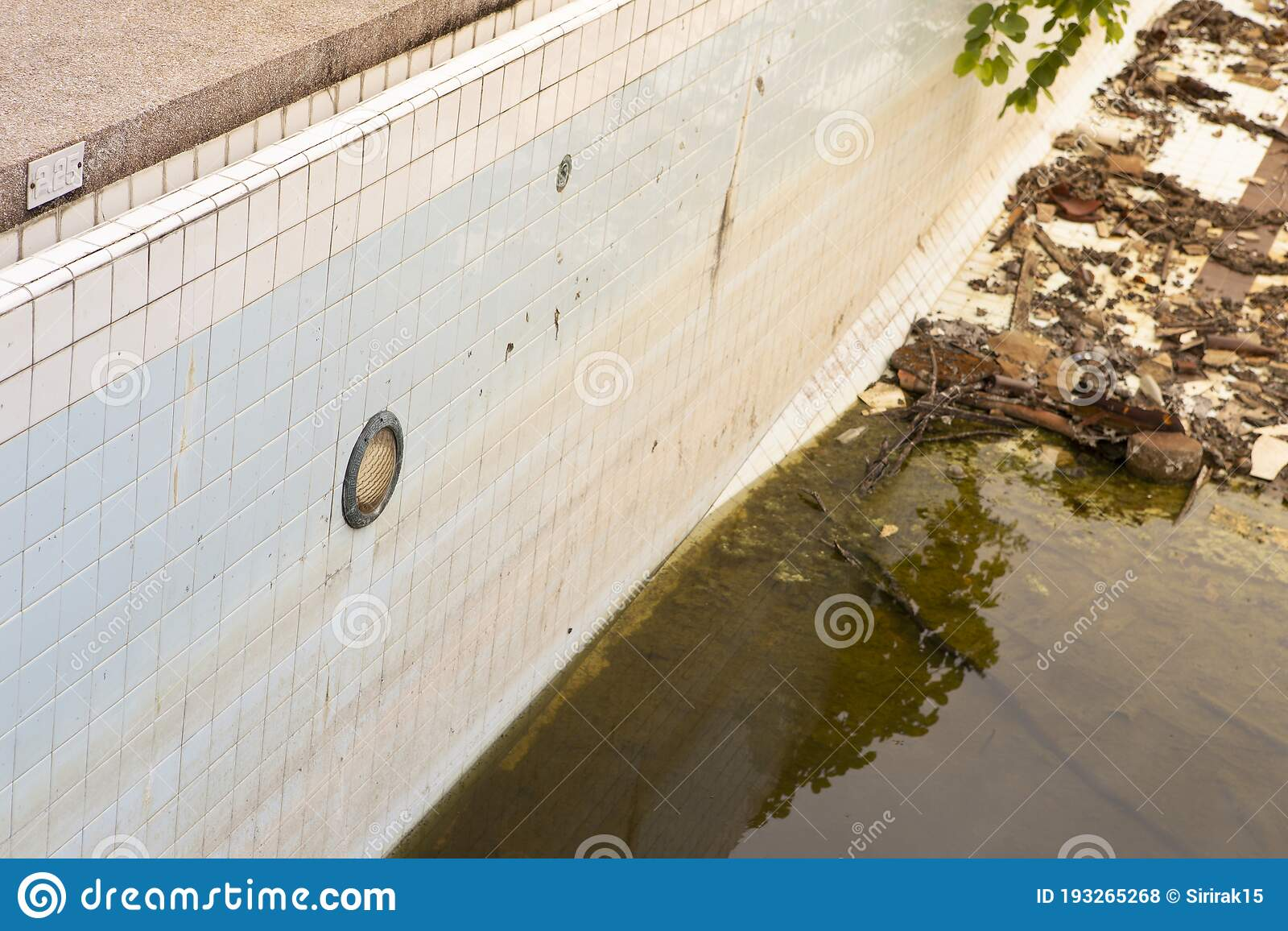 Abandoned Swimming Pool With Dirty Water And Garbage Stock Photo Image Of Rusty Algae 193265268