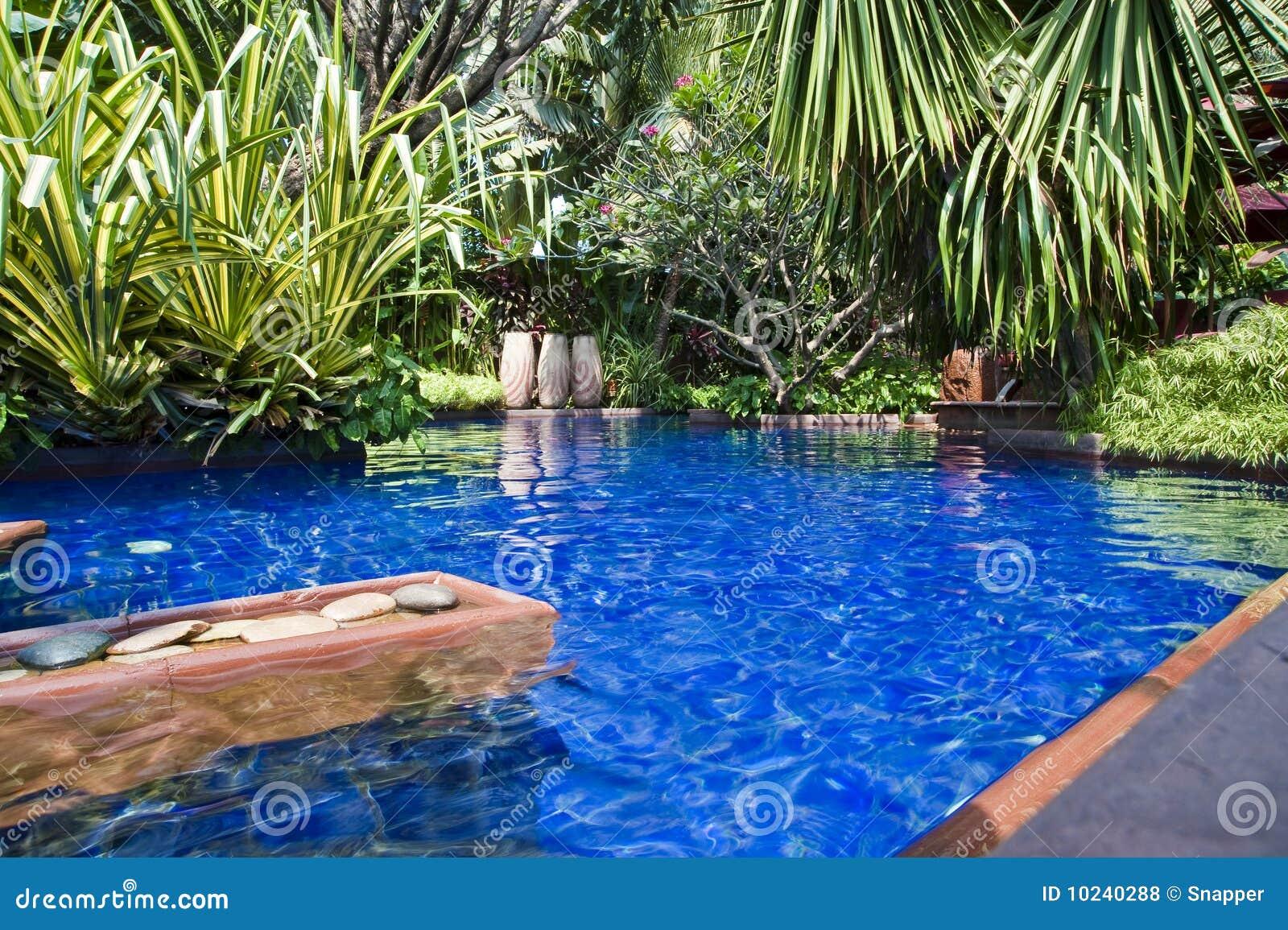 Swimmingpool Stockfoto Bild Von Bali Getaway Feiertage 10240288