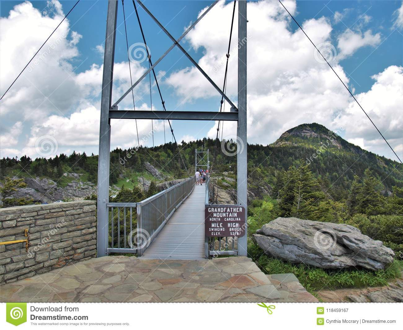 Swinging Bridge At Grandfather Mountain State Park Editorial