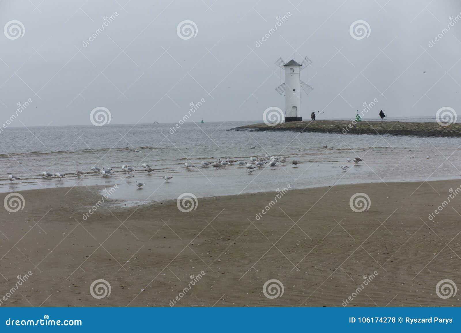 Swinoujscie, Poland, November 10, 2017: Sea Community when enter