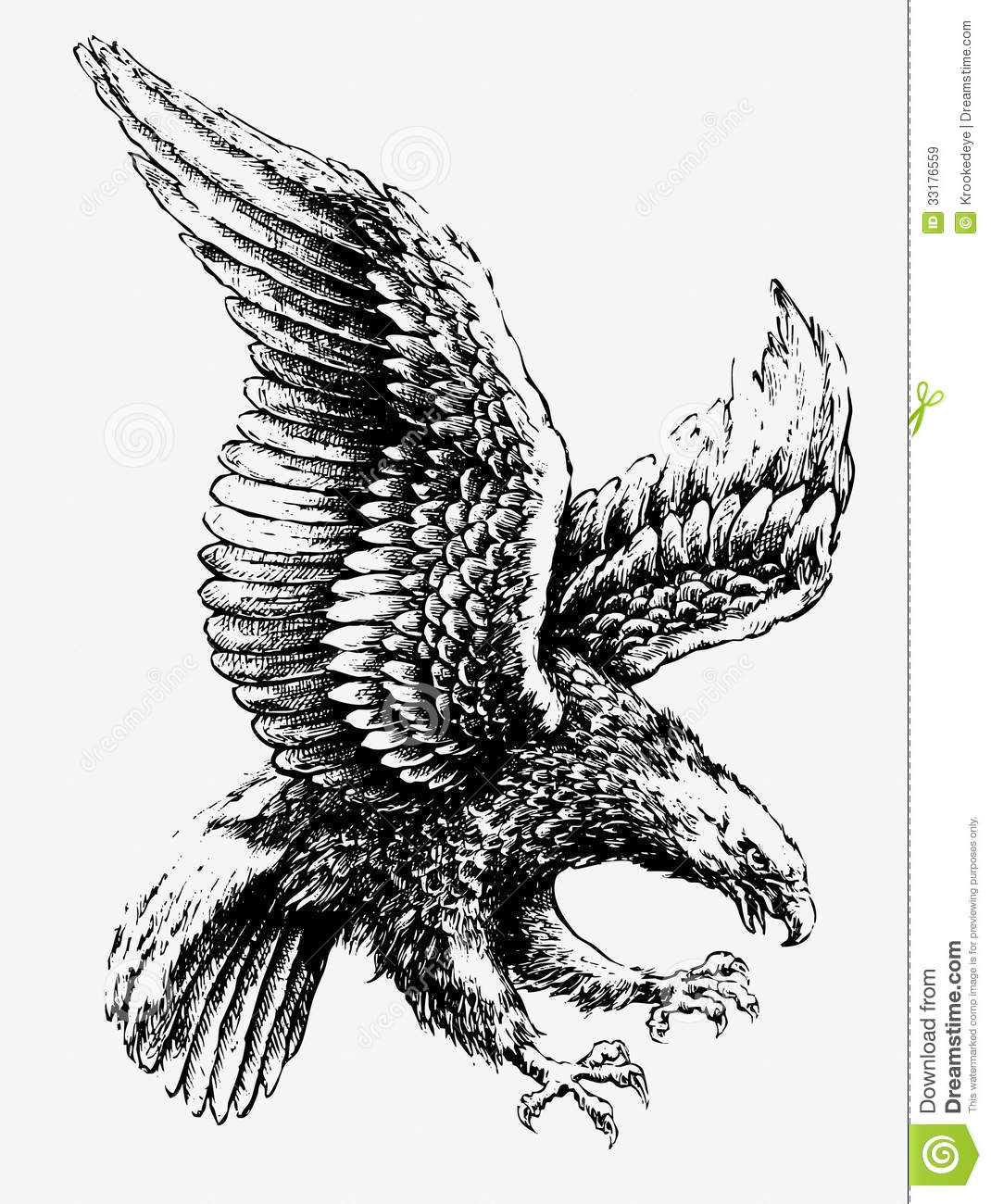 swooping eagle stock vector illustration of swooping 33176559. Black Bedroom Furniture Sets. Home Design Ideas